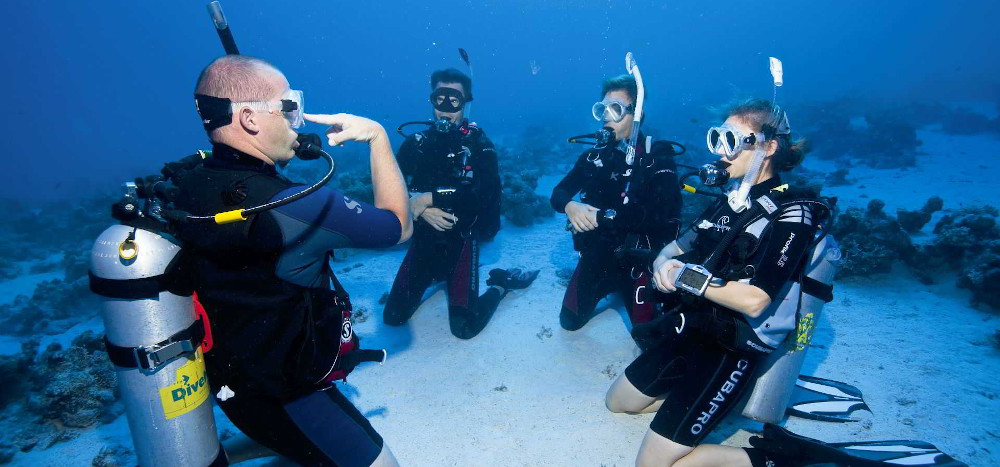 padi-training-header